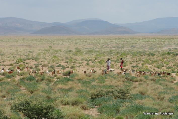 First views of Djibouti.