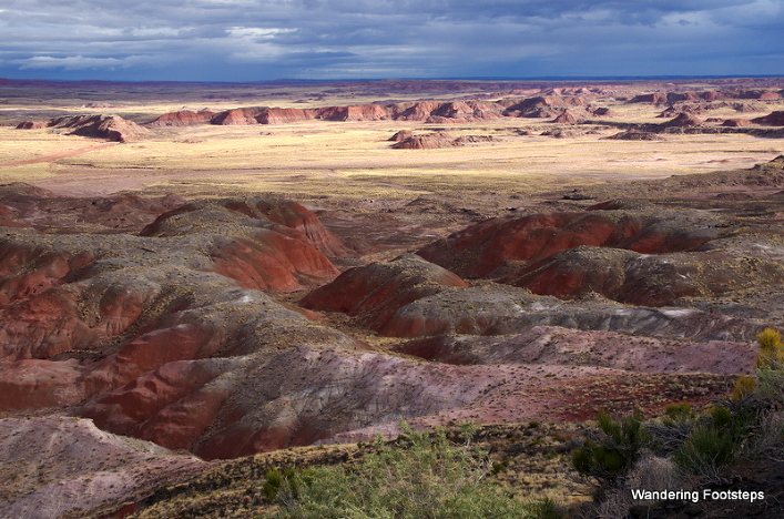 The Painted Desert, Petrified Forest N.P.