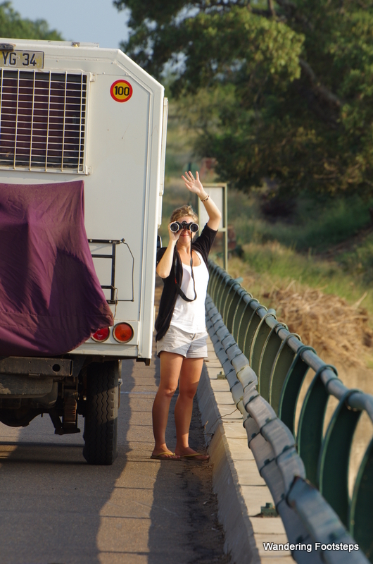 This is the life - on a private African safari with our very own camper van.